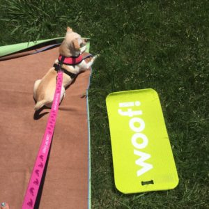 Doga at Fabletics Legacy West